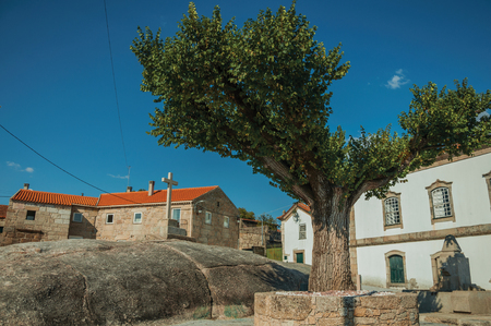 Short leafy tree on rocky ground in front of stone cross and old houses, in a sunny day at Lageosa do Mondego. A nice little village in the countryside, at mountain foothills on eastern Portugal.