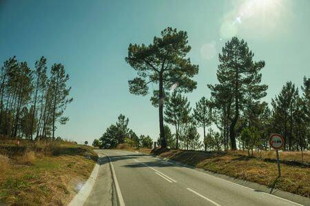 Road passing through rocky landscape with by trees and sun glow at the highlands of Serra da Estrela. The highest mountain range in continental Portugal, with astonishing scenery. Retouched photo.