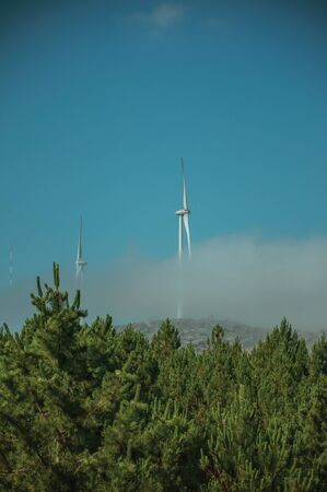 Wind turbines for electric power generation partially covered by mist above treetops, in a sunny day at Serra da Estrela. The highest mountain range in continental Portugal, with astonishing scenery.