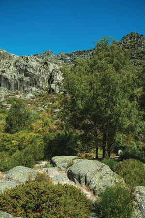 Mountainous landscape with rocky cliffs covered by green bushes and forest, at the highlands of Serra da Estrela. The highest mountain range in continental Portugal, with astonishing scenery.
