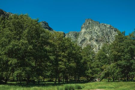 Mountainous landscape with rocky cliffs and lawn on a glade at forest fringe, in the highlands of the Serra da Estrela. The highest mountain range in continental Portugal, with astonishing scenery.