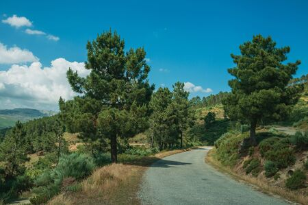 Countryside paved roadway passing through hilly landscape covered by green forest, in a sunny day at Serra da Estrela. The highest mountain range in continental Portugal, with astonishing scenery.