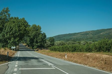 Empty straight paved road passing through rural landscape with peach trees farm, on sunny day near Belmonte. A cute small town, birthplace of the navigator Pedro Alvares Cabral, on eastern Portugal.