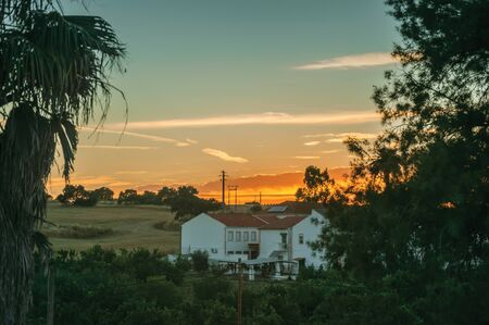 Countryside landscape with leafy palm tree, fields and cottage at sunset dusk, on a farmstead near Elvas. A gracious star-shaped fortress city on the easternmost frontier of Portugal. Banco de Imagens