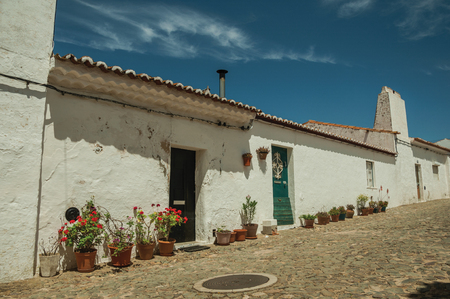 Humble white wall houses with flowers pots in a sunny day, on the cobblestone main street of Evoramonte. A tiny fortified civil parish over hill where stands out its historic castle in Portugal.