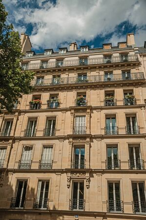 """Facade of typical building with balcony, flowered windows and leafy tree in a sunny day at Paris. Known as the """"City of Light"""", is one of the most impressive world's cultural center. Northern France."""