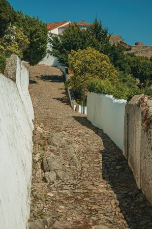 Cobblestone alley going up the hill among long whitewashed walls and green trees, in a sunny day at Marvao. An amazing medieval fortified village perched on a granite crag in eastern Portugal. Zdjęcie Seryjne