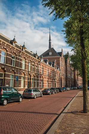 Empty street with semidetached brick houses, shade of trees at sunset and blue sky in s-Hertogenbosch. Gracious historical city with vibrant cultural life. Southern Netherlands. Publikacyjne