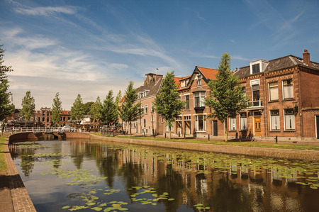 Tree-lined canal with aquatic plants, streets on the banks, brick houses and bridge on a sunny day in Weesp. Quiet and pleasant village full of canals and green near Amsterdam. Northern Netherlands.