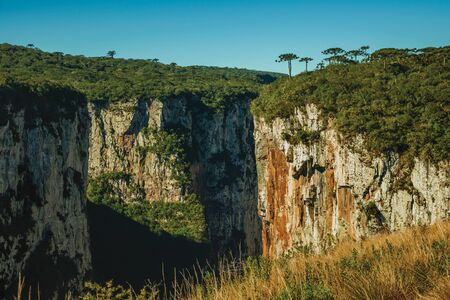 Itaimbezinho Canyon with steep rocky cliffs going through a flat plateau covered by forest near Cambara do Sul. A small country town in southern Brazil with amazing natural tourist attractions.