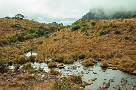 Small creek going through dry bushed towards rocky cliff at Fortaleza Canyon in a cloudy day near Cambara do Sul. A small rural town in southern Brazil with amazing natural tourist attractions.