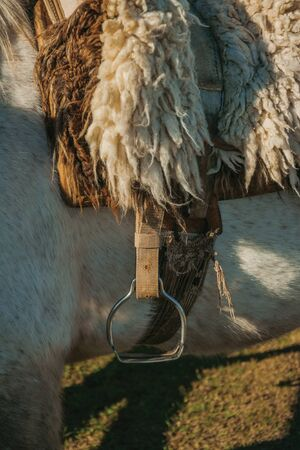 Detail of typical horse saddle made of sheep wool and steel stirrup on sunset, in a ranch near Cambara do Sul. A small rural town in southern Brazil with amazing natural tourist attractions.