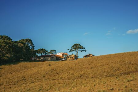 Wooden houses from farmstead on top of hill covered by pine trees and dry bushes near Cambara do Sul. A small country town in southern Brazil with amazing natural tourist attractions.