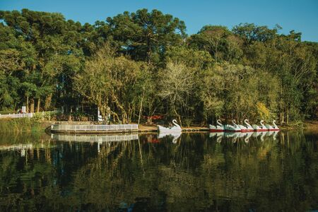 Nova Petropolis, Brazil - July 20, 2019. Pedal boats made of fiberglass in the shape of swan in a lake at Immigrant Village Park of Nova Petropolis. A rural town founded by German immigrants.