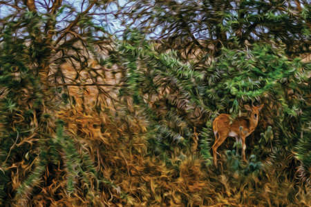 Gazelle hidden in the green bush on the Serengeti National Park. A conservation area in the African savanna where several species of large mammals live. Oil paint filter.
