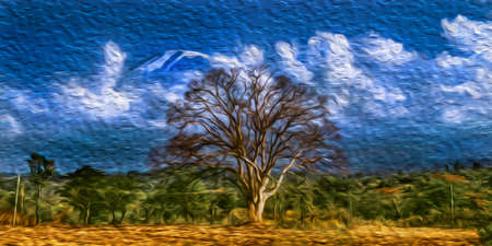 Leafless tree with the top of snowy Mount Kilimanjaro in the background. This Tanzanian dormant volcano is also the highest place in the continent and an African symbol. Oil paint filter.