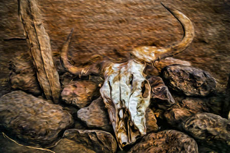 Buffalo skull over rocks in the Serengeti National Park. A conservation area in the African savanna where several species of large mammals live. Oil paint filter.