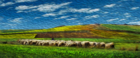 Bucolic rural landscape with flock of sheep grazing on green fields at the Way of St. James. A famous pilgrimage route leading to Santiago de Compostela in northern Spain. Oil paint filter.