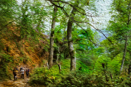 Hikers on dirt trail walking through forest at the Way of St. James. A famous pilgrimage route leading to Santiago de Compostela in northern Spain. Oil paint filter.