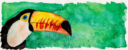 Portrayal of a colorful toucan in green background. Watercolor painting. Фото со стока
