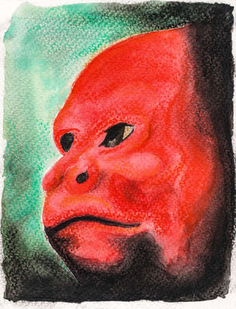 Portrayal of the human-like red face of an Uakari monkey. Watercolor painting.