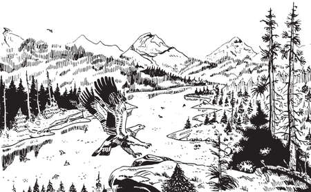 Illustration of an eagle landing on a rock with mountainous landscape covered by a forest crossed by a river. Ink drawing. Banque d'images
