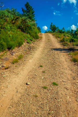 Dirt road passing through hilly terrain with trees at the highlands of Serra da Estrela. The highest mountain range in continental Portugal.