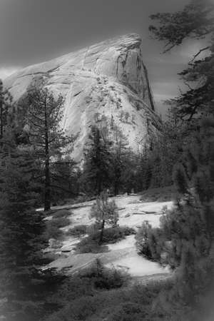 Views and things found on your way up to the top of Half Dome at Yosemite National Park in California photo