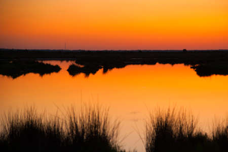 Lake at sunset, Black Point Wildlife Drive, Merritt Island National Wildlife Refuge, Titusville, a, USA photo