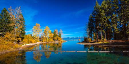 水、タホ シティ、タホ湖、カリフォルニア、米国に木の反射