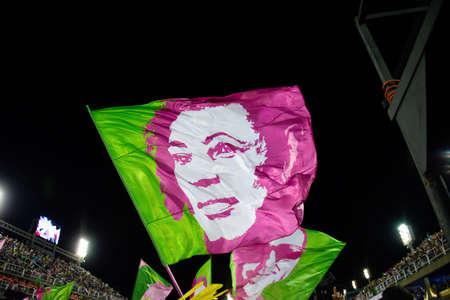 Rio, Brazil - march 04, 2019: Mangueira during the Carnival Samba School Carnival RJ 2019, at Sambodromo