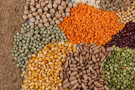 Gran colección de diferentes cereales y semillas comestibles. Ejemplos de fuentes de fibra Foto de archivo