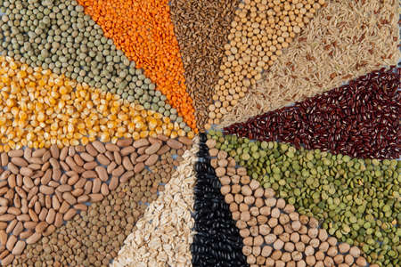 Big collection of different cereals and edible seeds. Grain angular pattern with top view