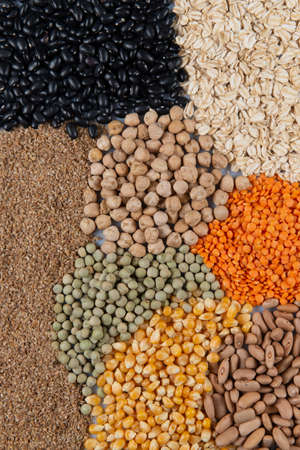 Big collection of different cereals and edible seeds. Fiber source examples