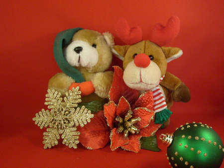 rudolf: Christmas display with teddy, Rudolf, poinsettia, gold snowlake and tree bauble