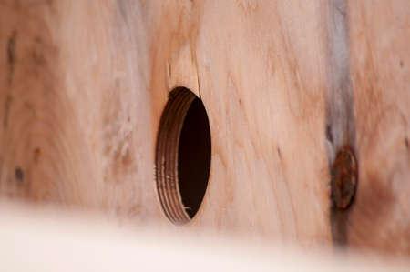 backround: Wood Backround