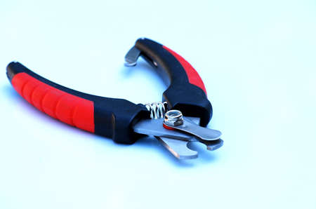 trimmers: dog claw trimmers Stock Photo