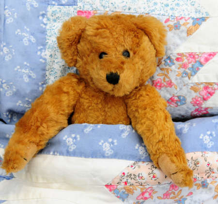 poorly: Teddy in bed