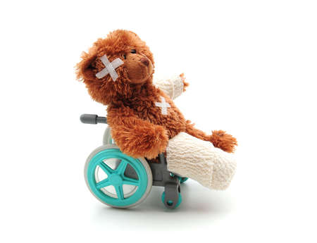 immobile: bear in wheelchair