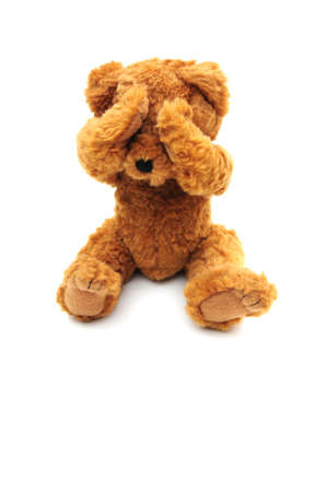 hide and seek: sad bear