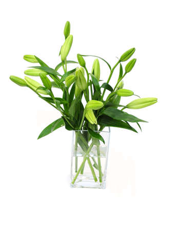 vase of lilies Stock Photo
