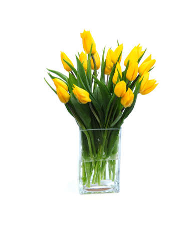 Tulips in vase photo