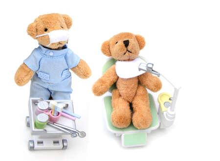 Bear dentist