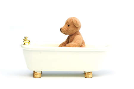 bathing bear