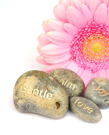 stone of destiny: stones and a pink flower
