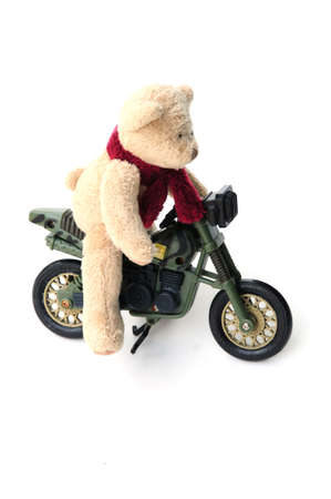 scrambler: Bear on bike