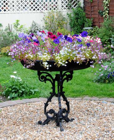 pretty planter Stock Photo