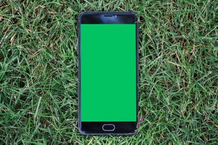 smartphone with green screen for key chroma screen. on Green grass background smartphone with Stock Photo