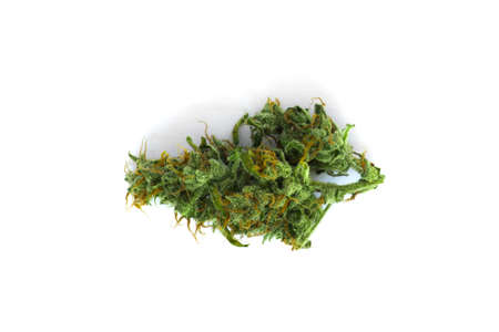 Cannabis bud top view isolated on white background weed Stock Photo