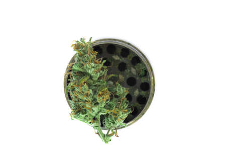 Metallic gray grinder with buds of marijuana, weed cannabis isolated on white background weed